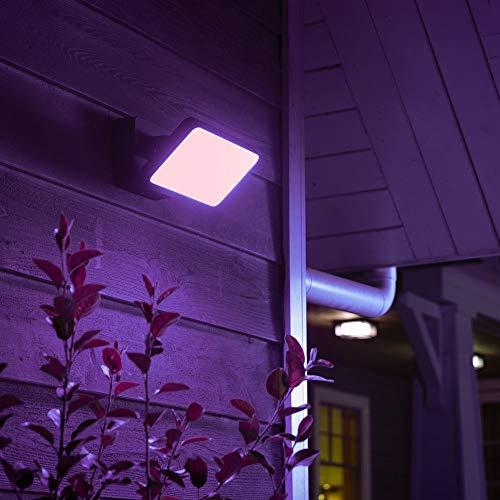Philips Hue White & Color Ambiance Discover Flutlicht, schwarz   LED-Strahler für den Aussenbereich, dimmbar, bis zu 16 Millionen Farben, steuerbar via App, Smartphone & Tablet