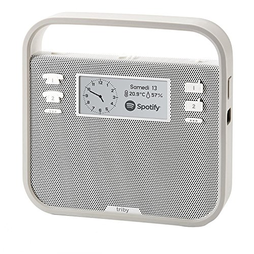 invoxia Tragbarer Smart-Lautsprecher mit Alexa Sprachservice, Grau