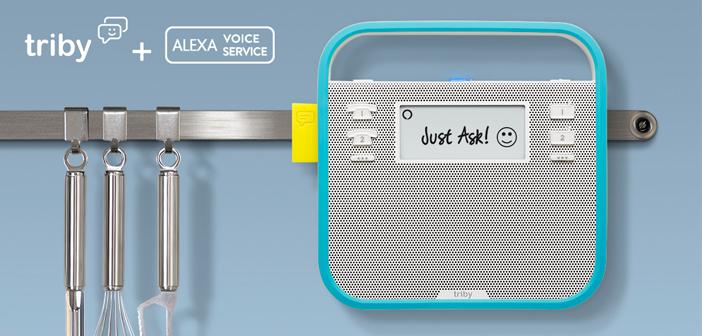 Kuchenradio Mit Sprachsteuerung Triby Family Unterstutzt Amazon