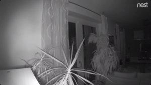 Google Nest Indoor Nachtsicht